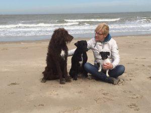 hondjes en ik op strand